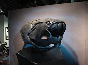 royal_tyrrell_museum_5977.JPG