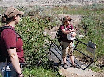 """【ネタフル・カナダ支局】ロイヤル・ティレル恐竜博物館の化石発掘ツアー(Dig Experience)で""""生""""化石を掘る"""