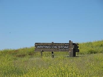 【ネタフル・カナダ支局】Writing-on-Stone Provincial Parkで先住民の壁画を見た