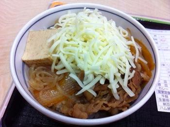 Yoshinoya 8027