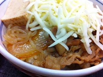 Yoshinoya 8028