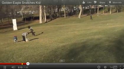 【動画あり】恐怖!飛来したイヌワシが人間の赤ちゃんを連れ去る瞬間!?