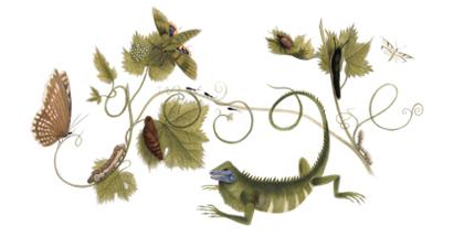 Googleロゴ「マリア ジビーラ メーリアン」に