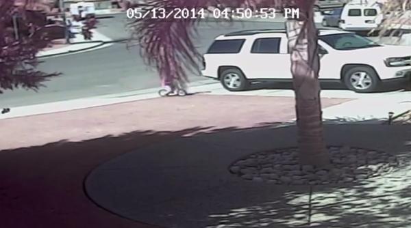 【動画あり】衝撃的!犬に襲われた子供を猫が助けた!