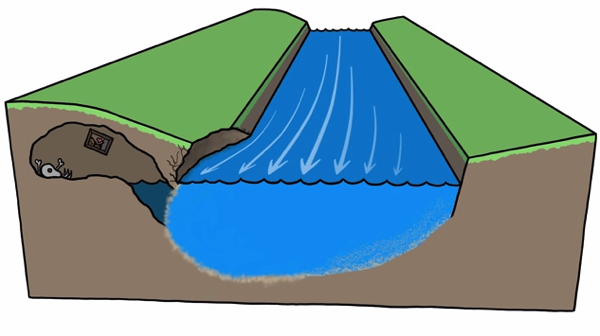 【動画】川はなぜ蛇行するのか? 三日月湖はどうやってできるのか?