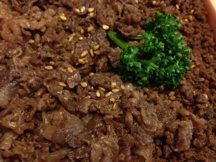 Beef domannaka 9688