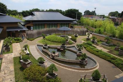 【プロのコツ】大宮盆栽美術館でフォトウォーク → 盆栽の見方と写真撮影のコツを教えて貰った!