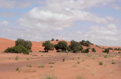 Desert1837673200