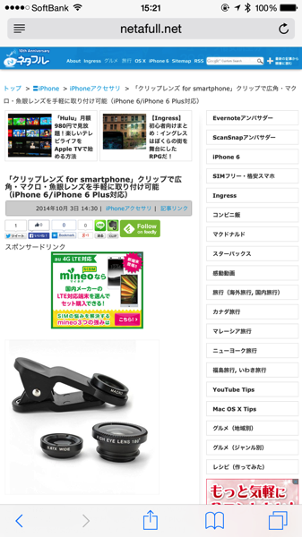 Iphone safari 4523