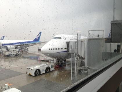 1月の石垣島は寒いの!?日本でいちばん早い春を探しに、3月に新空港が開港する石垣島と離島に行ってきます!