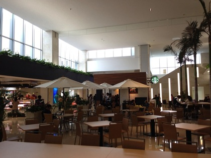 Ishigaki airport 8080