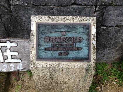 Kohamajima 5960