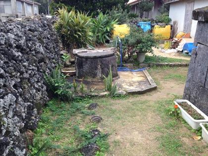 Kohamajima 5961