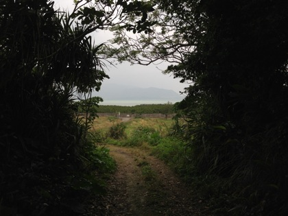 Kohamajima 5985