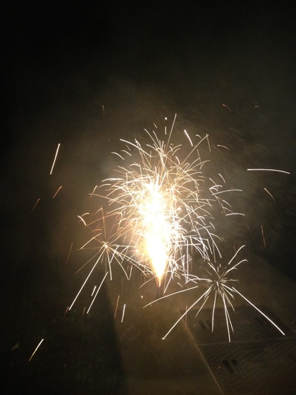 Nasu 2012 1511