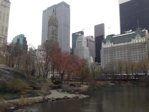 New york 6101