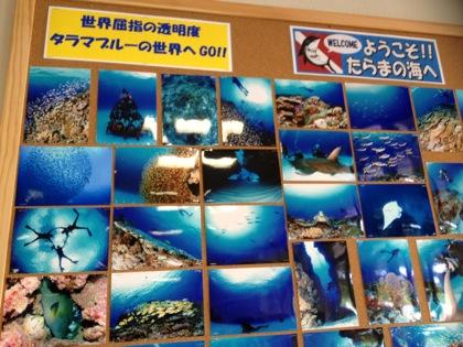 Okinawa 1825