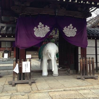 Tomonoura 7761