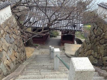 Tomonoura 7768