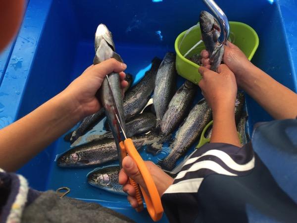 Toshimaen fishing 5719