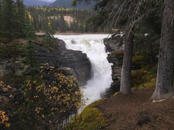「アサバスカ滝(Athabasca Falls)」 #アイスフィールド・パークウェイ #アルバータ秋旅 #カナダ