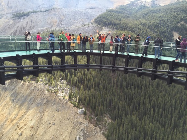 「グレーシャー・スカイウォーク(Glacier Skywalk)」深さ280m!断崖絶壁から35m飛び出した恐怖の施設 #アイスフィールド・パークウェイ #アルバータ秋旅 #カナダ