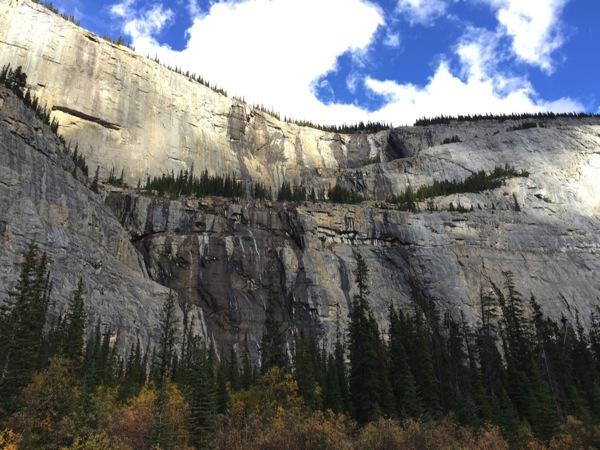 「すすり泣く壁(Weeping Wall)」 #アイスフィールド・パークウェイ #アルバータ秋旅 #カナダ
