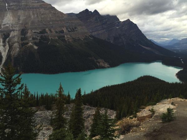 「ピート湖(Peyto Lake)」坂を下ると突如、目の前に現れる空色の湖! #アイスフィールド・パークウェイ #アルバータ秋旅 #カナダ