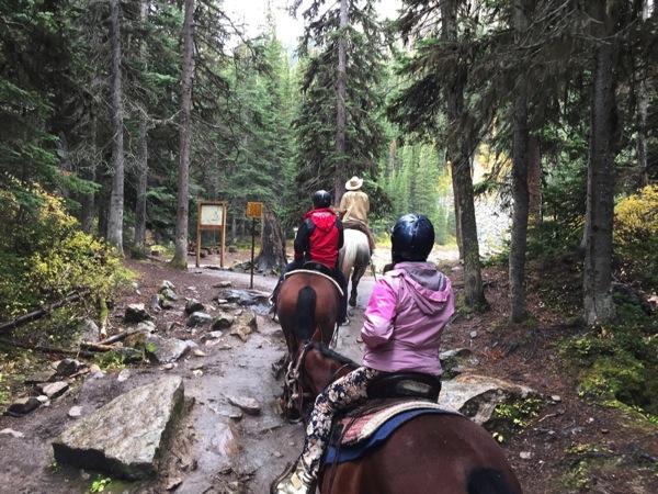 レイク・ルイーズで想定外の乗馬体験!乗馬初心者が馬に乗って山を登る!そして登り切ったその先にあったものとは? #アルバータ秋旅 #カナダ