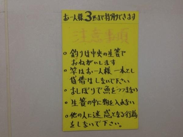 Tsuribori ikoi 9662