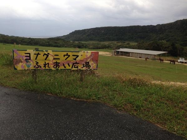 Yonaguni trip 5656
