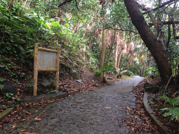 Yonaguni trip 5766