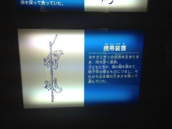 Yonaguni trip 5798
