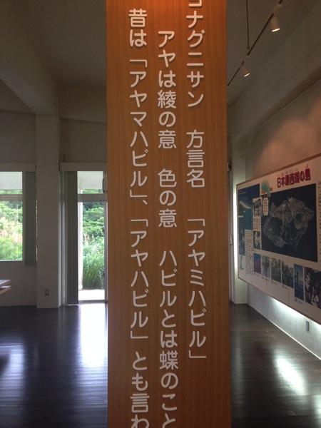 Yonaguni trip 5799