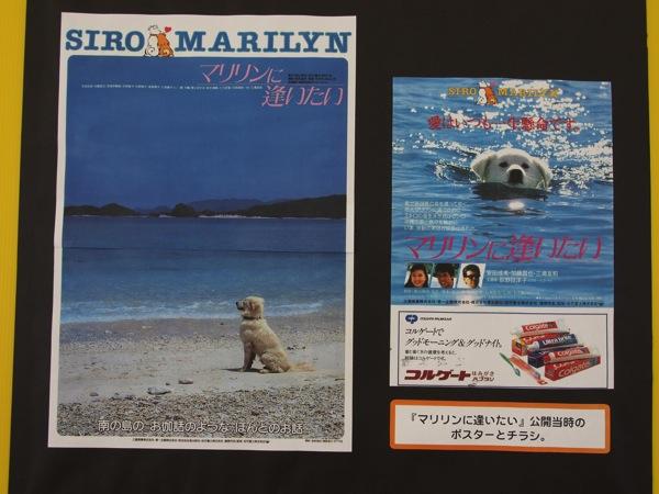 座間味島は映画「マリリンに逢いたい」の舞台になった島【2泊3日の沖縄島旅】