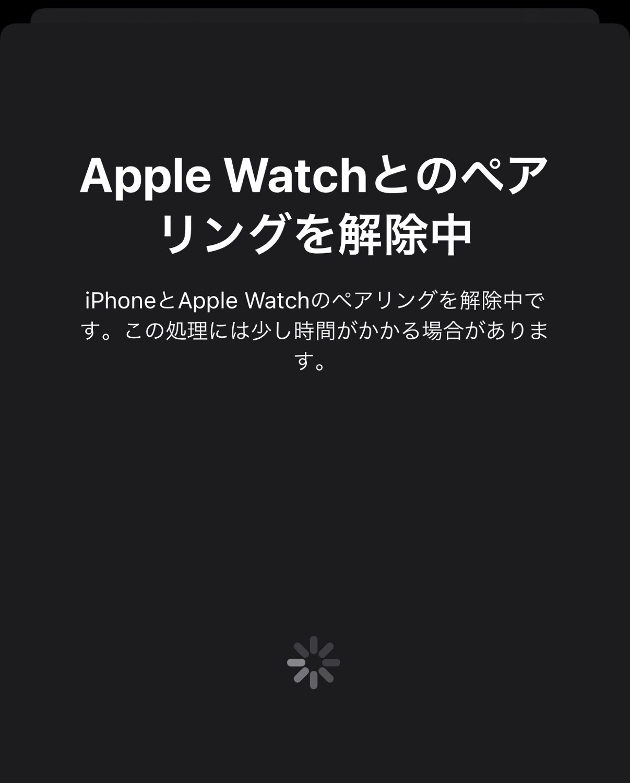 【Apple Watch 6】機種変更しようとしていきなり失敗した話【my new gear...】 22 17 04