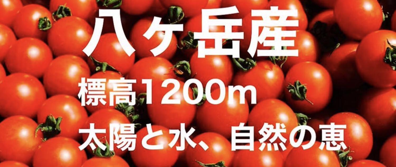 Netafull18 pencil tomato
