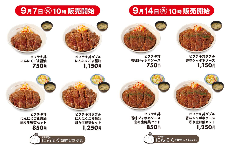 Matsuya beefsteak don 05002